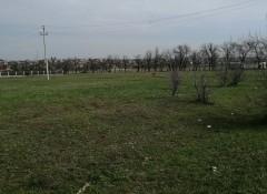 Участок в Александровке