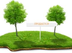 Участок в с. Красноселка /Тенистая
